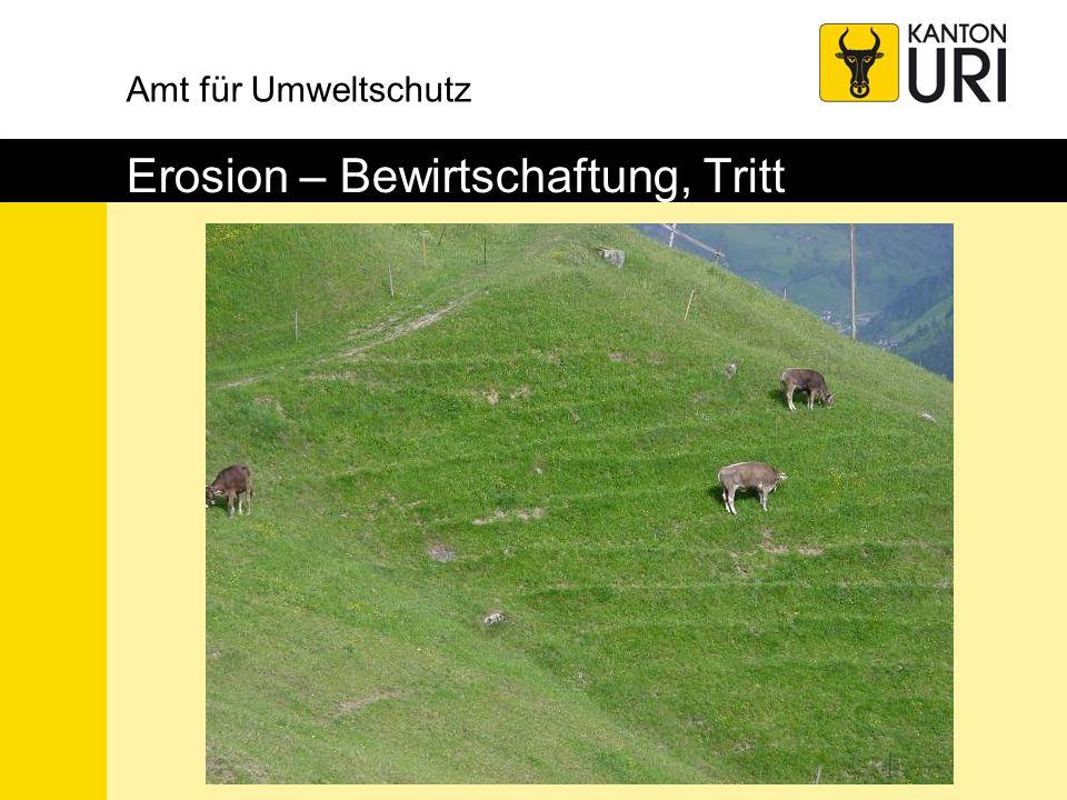 Amt für Umweltschutz Erosion – Bewirtschaftung, Tritt
