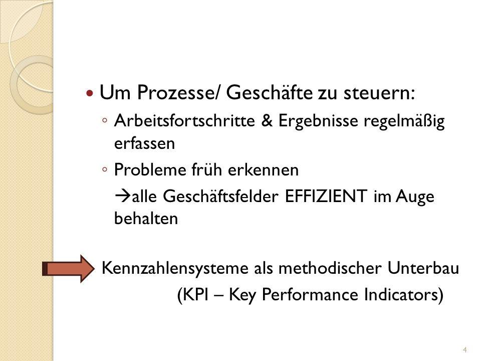 Um Prozesse/ Geschäfte zu steuern: Arbeitsfortschritte & Ergebnisse regelmäßig erfassen Probleme früh erkennen alle Geschäftsfelder EFFIZIENT im Auge