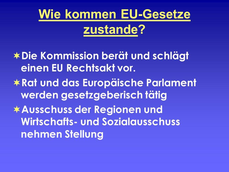 Wie kommen EU-Gesetze zustande? Die Kommission berät und schlägt einen EU Rechtsakt vor. Rat und das Europäische Parlament werden gesetzgeberisch täti
