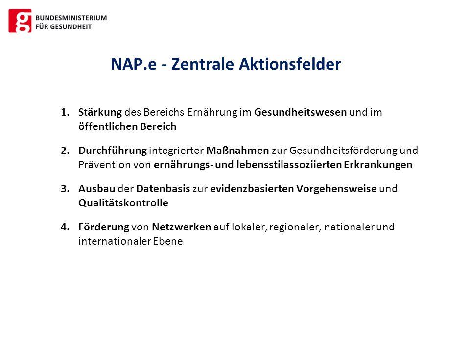 NAP.e - Zentrale Aktionsfelder 1.Stärkung des Bereichs Ernährung im Gesundheitswesen und im öffentlichen Bereich 2.Durchführung integrierter Maßnahmen