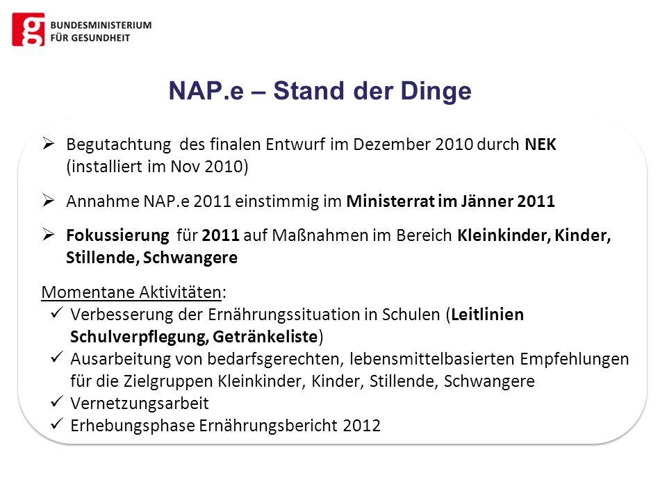 NAP.e – Stand der Dinge Begutachtung des finalen Entwurf im Dezember 2010 durch NEK (installiert im Nov 2010) Annahme NAP.e 2011 einstimmig im Ministe