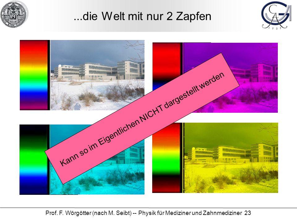 Prof. F. Wörgötter (nach M. Seibt) -- Physik für Mediziner und Zahnmediziner 23...die Welt mit nur 2 Zapfen Kann so im Eigentlichen NICHT dargestellt