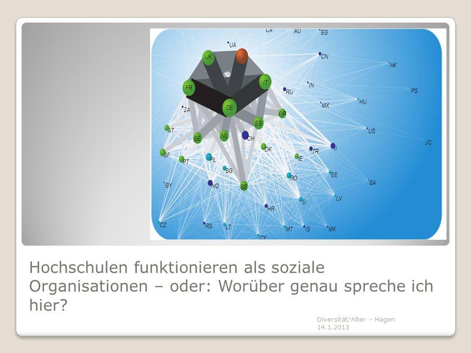 Hochschulen funktionieren als soziale Organisationen – oder: Worüber genau spreche ich hier? Diversität/Alter - Hagen 14.1.2013