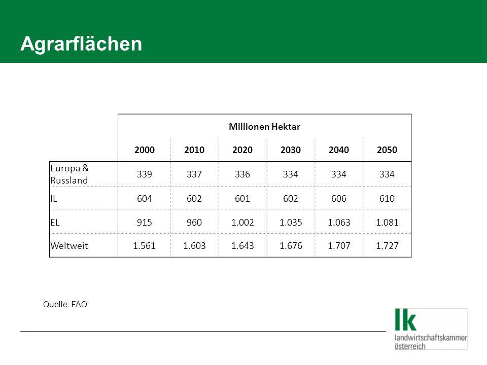 Getreideproduktion/Verbrauch seit 99/2000 22.02.2014 /Folie 4