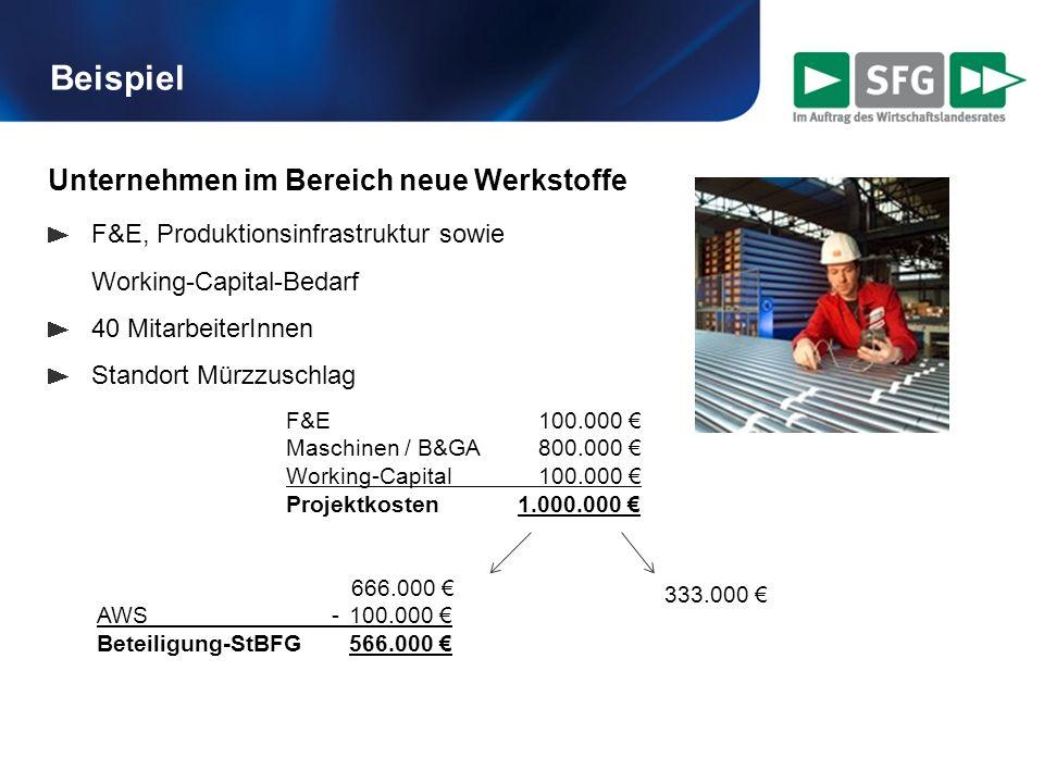 Unternehmen im Bereich neue Werkstoffe F&E, Produktionsinfrastruktur sowie Working-Capital-Bedarf 40 MitarbeiterInnen Standort Mürzzuschlag Beispiel F