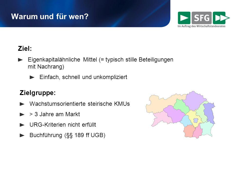 Warum und für wen? Zielgruppe: Wachstumsorientierte steirische KMUs > 3 Jahre am Markt URG-Kriterien nicht erfüllt Buchführung (§§ 189 ff UGB) Ziel: E