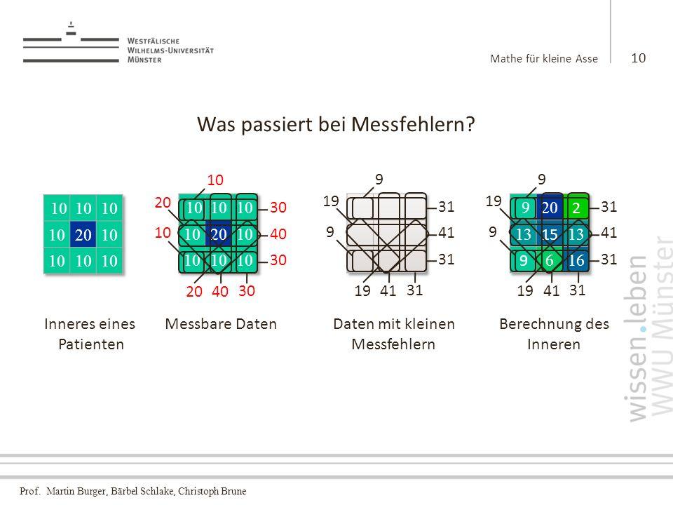 Prof.Martin Burger, Bärbel Schlake, Christoph Brune Was passiert bei Messfehlern.