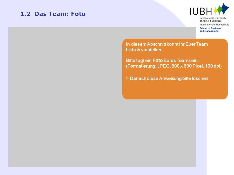 1.2 Das Team: Foto In diesem Abschnitt könnt Ihr Euer Team bildlich vorstellen. Bitte fügt ein Foto Eures Teams ein. (Formatierung: JPEG, 800 x 600 Pi