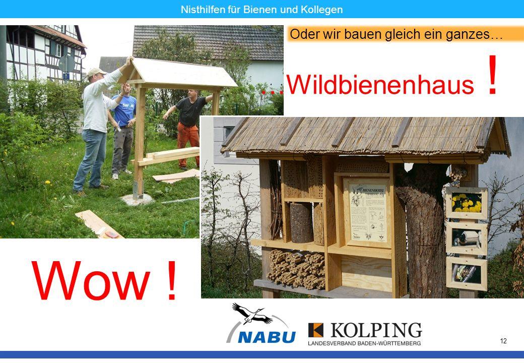 11.11.08MK12 Nisthilfen für Bienen und Kollegen Oder wir bauen gleich ein ganzes… …Wildbienenhaus ! Wow !