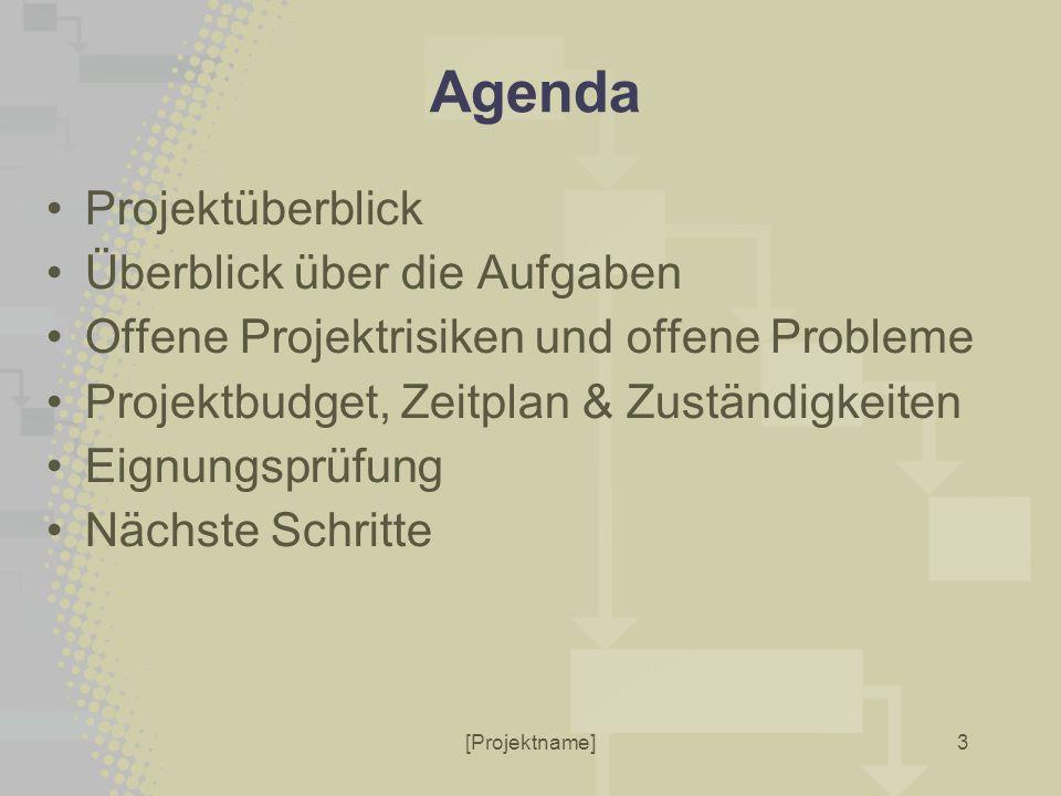 [Projektname]3 Agenda Projektüberblick Überblick über die Aufgaben Offene Projektrisiken und offene Probleme Projektbudget, Zeitplan & Zuständigkeiten Eignungsprüfung Nächste Schritte