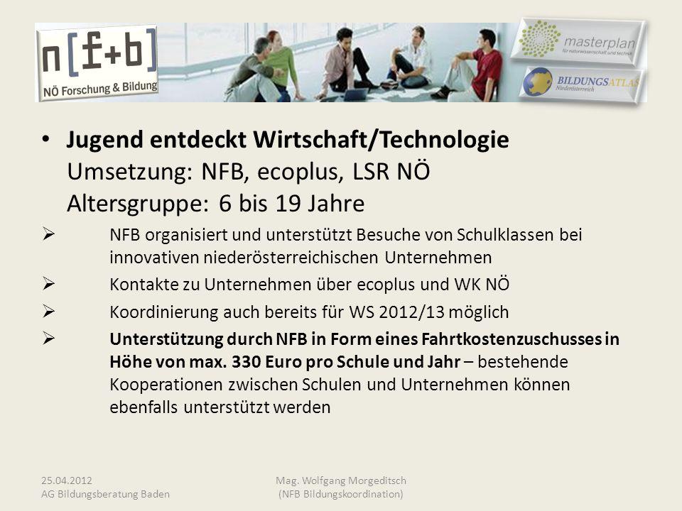 Jugend entdeckt Wirtschaft/Technologie Umsetzung: NFB, ecoplus, LSR NÖ Altersgruppe: 6 bis 19 Jahre NFB organisiert und unterstützt Besuche von Schulk