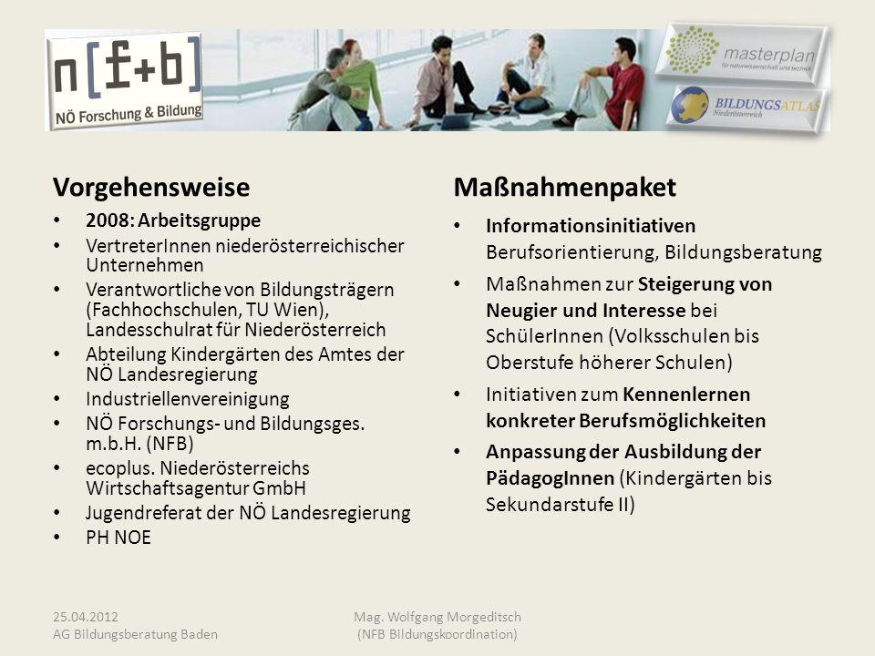 Vorgehensweise 2008: Arbeitsgruppe VertreterInnen niederösterreichischer Unternehmen Verantwortliche von Bildungsträgern (Fachhochschulen, TU Wien), L