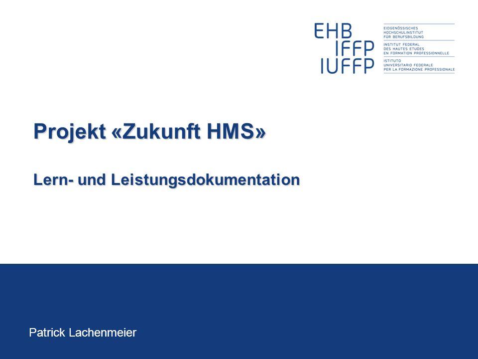 Projekt «Zukunft HMS» Lern- und Leistungsdokumentation Patrick Lachenmeier