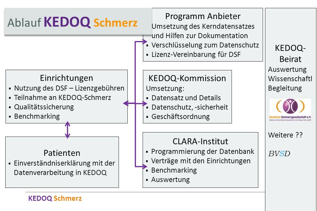 KEDOQ Schmerz KEDOQ- Beirat Auswertung Wissenschaftl Begleitung Weitere ?? BVSD Einrichtungen Nutzung des DSF – Lizenzgebühren Teilnahme an KEDOQ-Schm