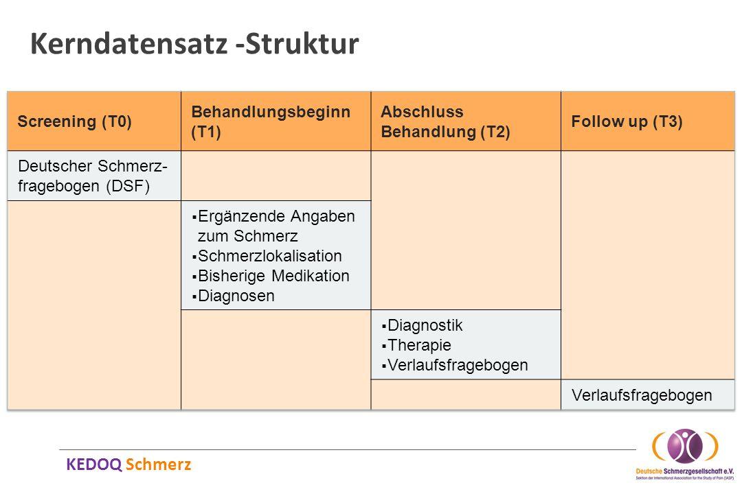 KEDOQ Schmerz Kerndatensatz -Struktur