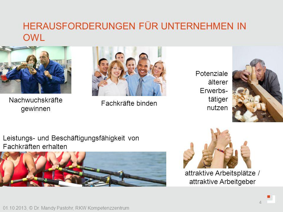 HERAUSFORDERUNGEN FÜR UNTERNEHMEN IN OWL 4 01.10.2013, © Dr. Mandy Pastohr, RKW Kompetenzzentrum Nachwuchskräfte gewinnen Fachkräfte binden Potenziale