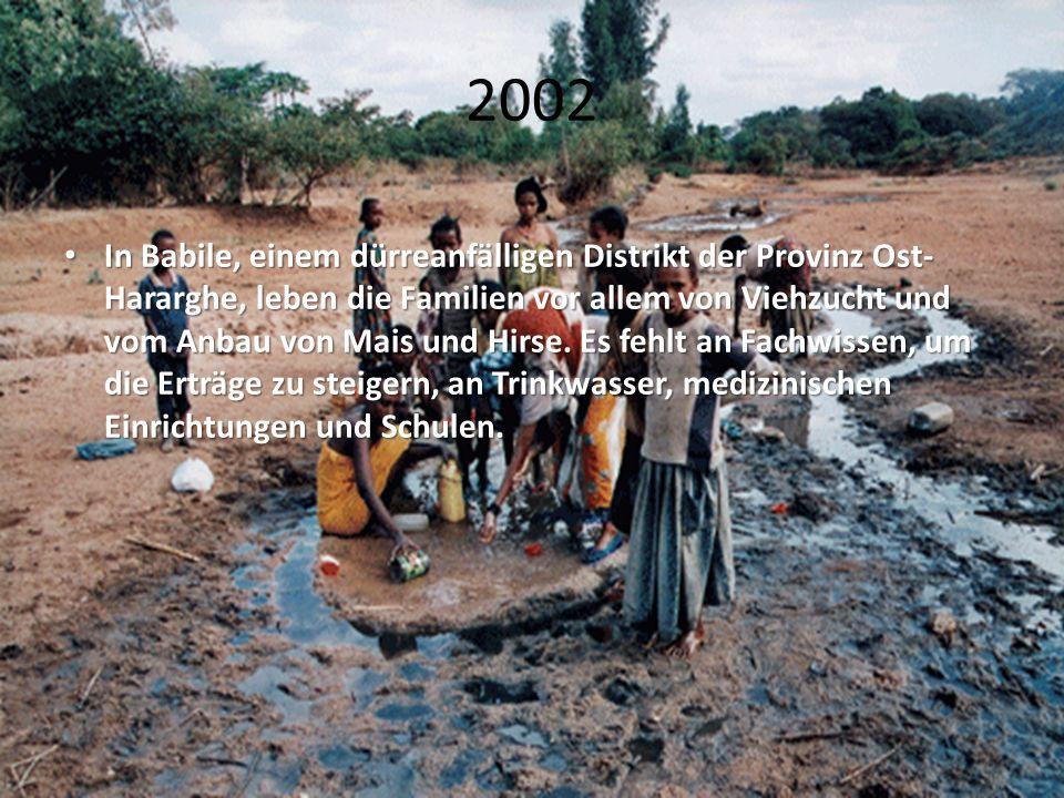 2002 In Babile, einem dürreanfälligen Distrikt der Provinz Ost- Hararghe, leben die Familien vor allem von Viehzucht und vom Anbau von Mais und Hirse.