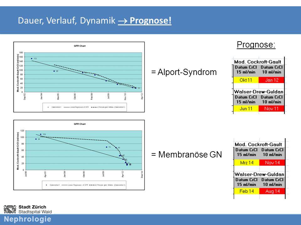Nephrologie Welche Fragen bezüglich Niereninsuffizienz stellen sich.