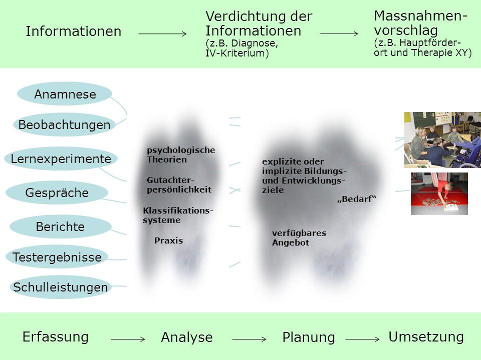 5 Das Standardisierte Abklärungsverfahren: Zielsetzungen, Aufbau und Anwendung | Mai 2011 Anamnese Beobachtungen Testergebnisse Gespräche Lernexperime