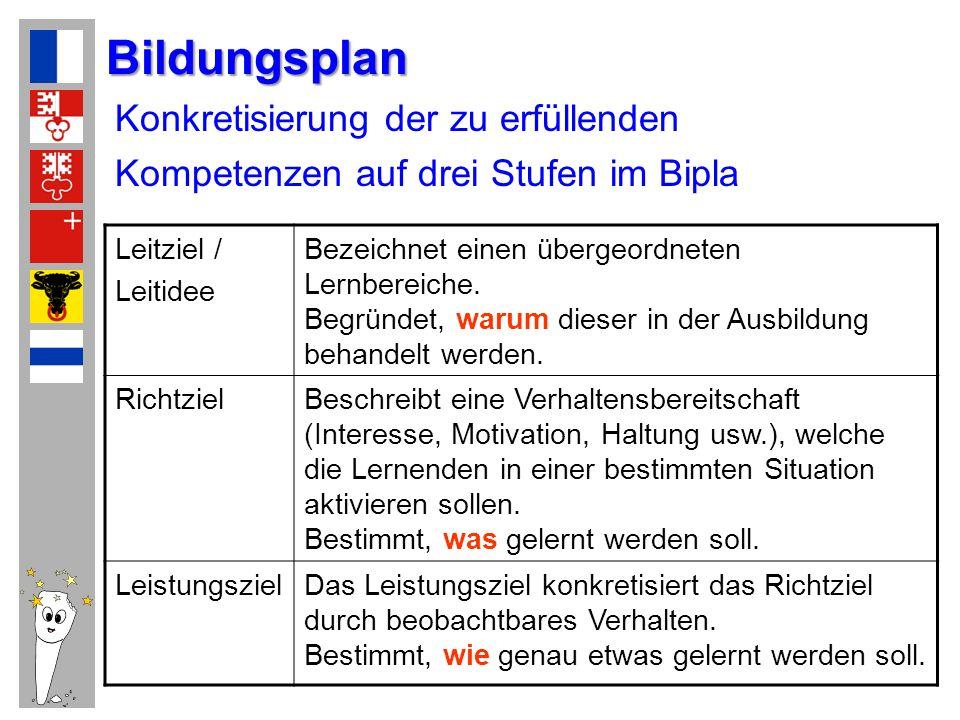 Konkretisierung der zu erfüllenden Kompetenzen auf drei Stufen im Bipla Leitziel / Leitidee Bezeichnet einen übergeordneten Lernbereiche. Begründet, w