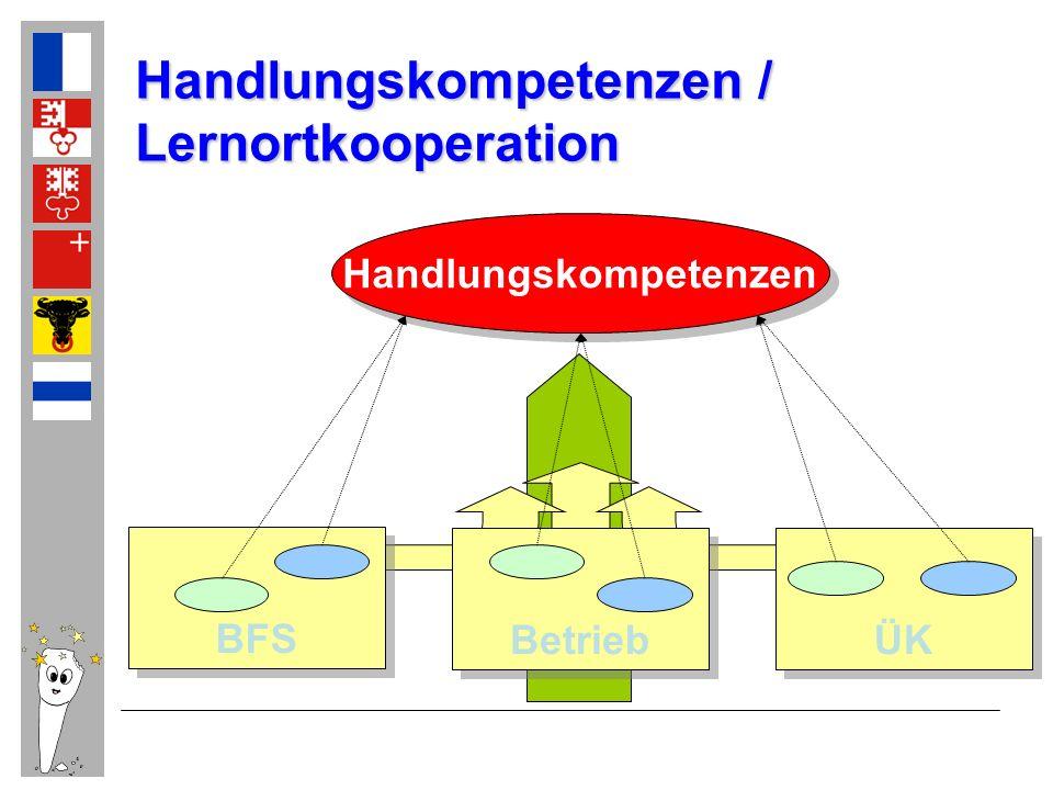 Handlungskompetenzen BFS Betrieb ÜK Handlungskompetenzen / Lernortkooperation
