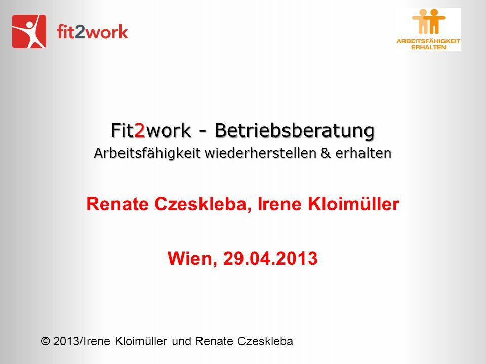© 2013/Irene Kloimüller und Renate Czeskleba Fit2work - Betriebsberatung Arbeitsfähigkeit wiederherstellen & erhalten Renate Czeskleba, Irene Kloimüll