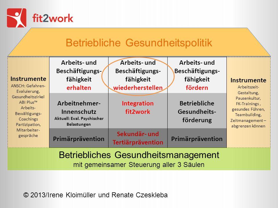 © 2013/Irene Kloimüller und Renate Czeskleba Instrumente ANSCH: Gefahren- Evaluierung, Gesundheitszirkel ABI Plus Arbeits- Bewältigungs- Coachings Par