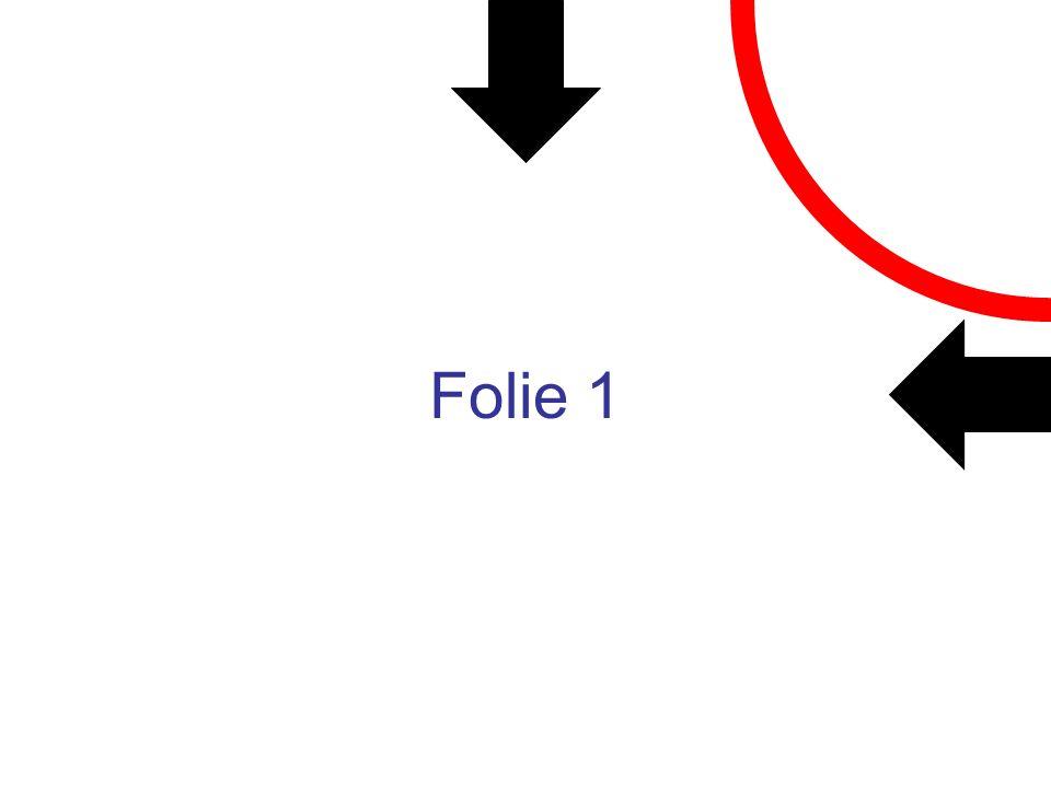 Folie 1