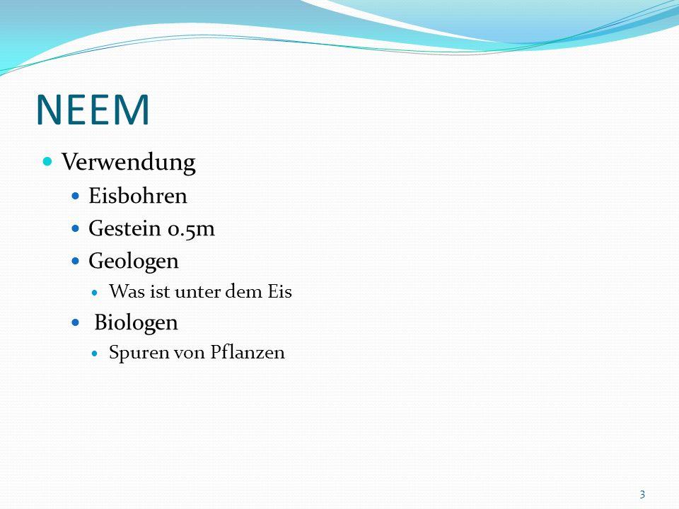 NEEM Verwendung Eisbohren Gestein 0.5m Geologen Was ist unter dem Eis Biologen Spuren von Pflanzen 3