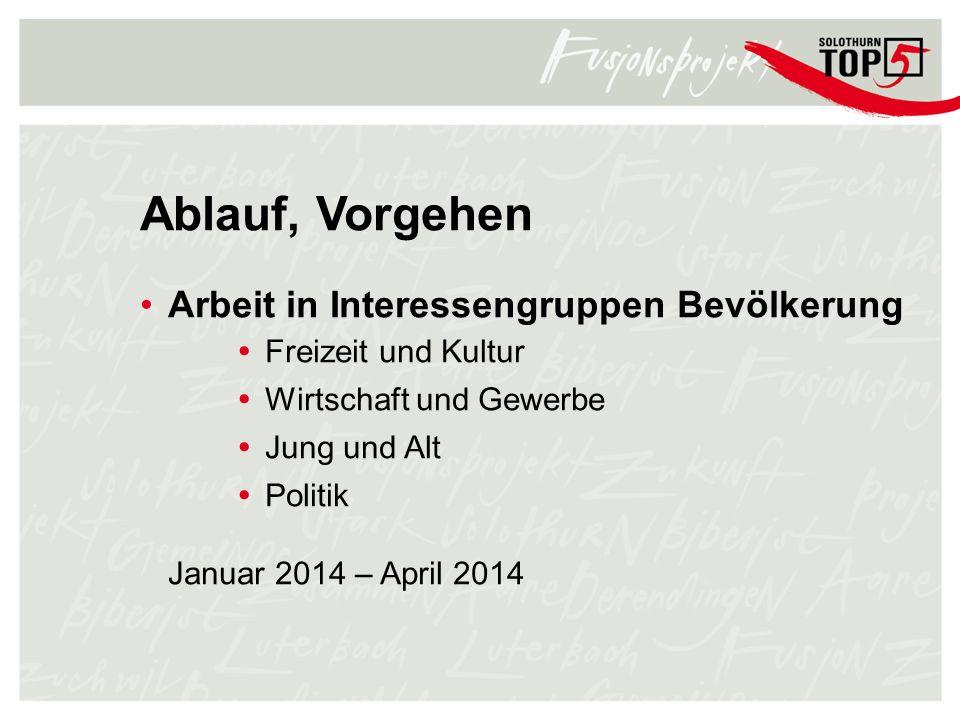 Ablauf, Vorgehen Arbeit in Interessengruppen Bevölkerung Freizeit und Kultur Wirtschaft und Gewerbe Jung und Alt Politik Januar 2014 – April 2014