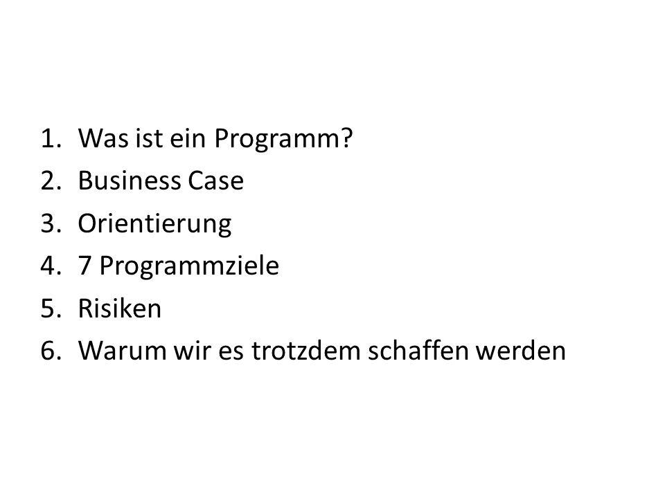 1.Was ist ein Programm? 2.Business Case 3.Orientierung 4.7 Programmziele 5.Risiken 6.Warum wir es trotzdem schaffen werden