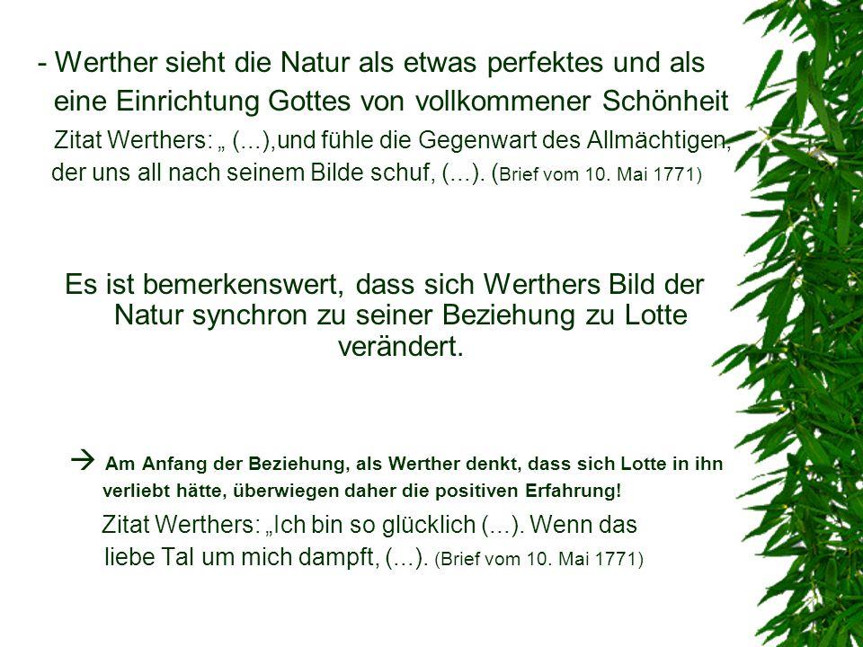 - Werther sieht die Natur als etwas perfektes und als eine Einrichtung Gottes von vollkommener Schönheit Zitat Werthers: (...),und fühle die Gegenwart