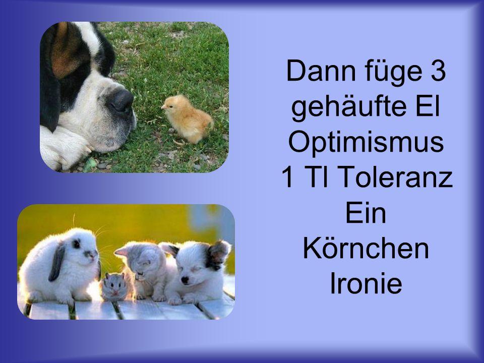 Dann füge 3 gehäufte El Optimismus 1 Tl Toleranz Ein Körnchen Ironie