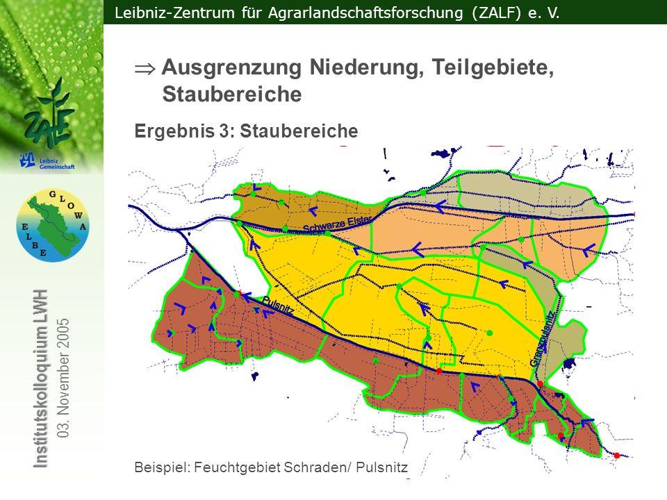 Leibniz-Zentrum für Agrarlandschaftsforschung (ZALF) e. V. Institutskolloquium LWH 03. November 2005 Ergebnis 1: Ausgegrenzte Niederungsfläche + Einzu