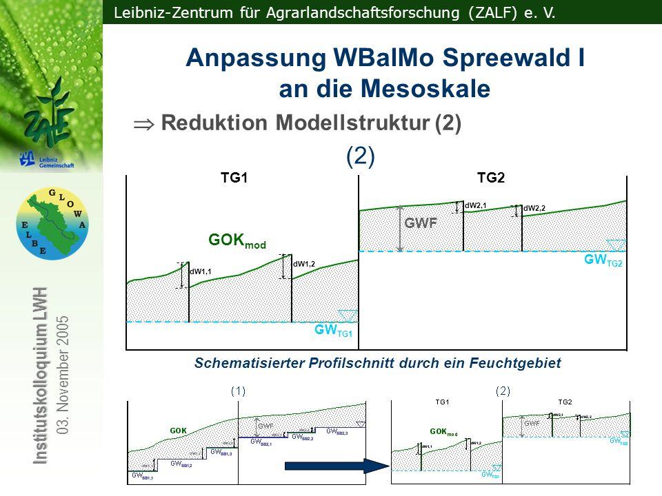 Leibniz-Zentrum für Agrarlandschaftsforschung (ZALF) e. V. Institutskolloquium LWH 03. November 2005 Reduktion Modellstruktur (2) GW SB1,1 GW SB1,2 GW