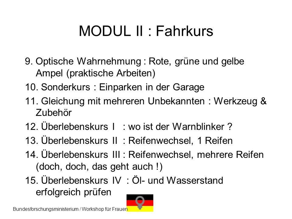9. Optische Wahrnehmung : Rote, grüne und gelbe Ampel (praktische Arbeiten) 10. Sonderkurs : Einparken in der Garage 11. Gleichung mit mehreren Unbeka