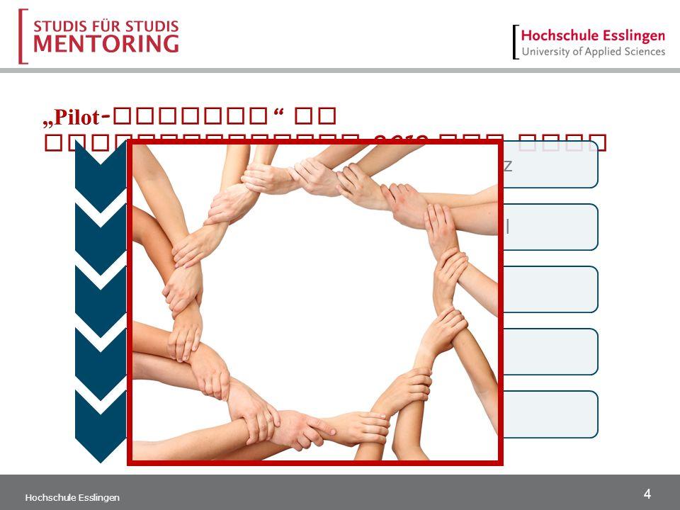 4 Hochschule Esslingen Schulung der MentorInnenMärz 1.