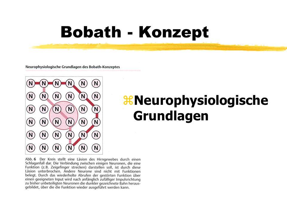 Bobath - Konzept z Neurophysiologische Grundlagen