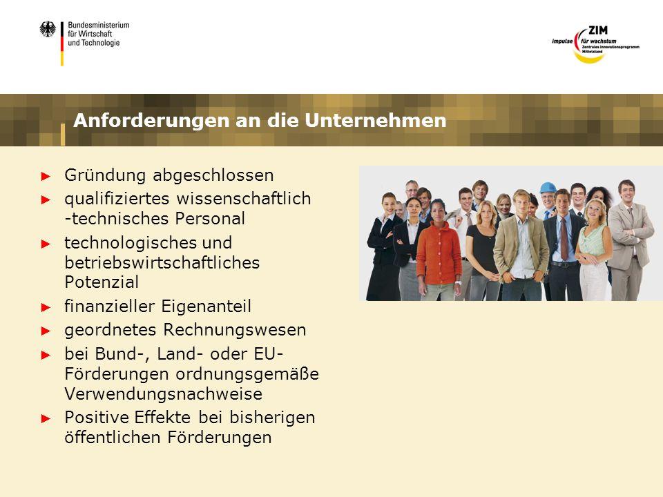 Anforderungen an die Unternehmen Gründung abgeschlossen qualifiziertes wissenschaftlich -technisches Personal technologisches und betriebswirtschaftli