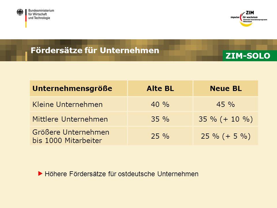 Fördersätze für Unternehmen UnternehmensgrößeAlte BLNeue BL Kleine Unternehmen40 %45 % Mittlere Unternehmen35 %35 % (+ 10 %) Größere Unternehmen bis 1