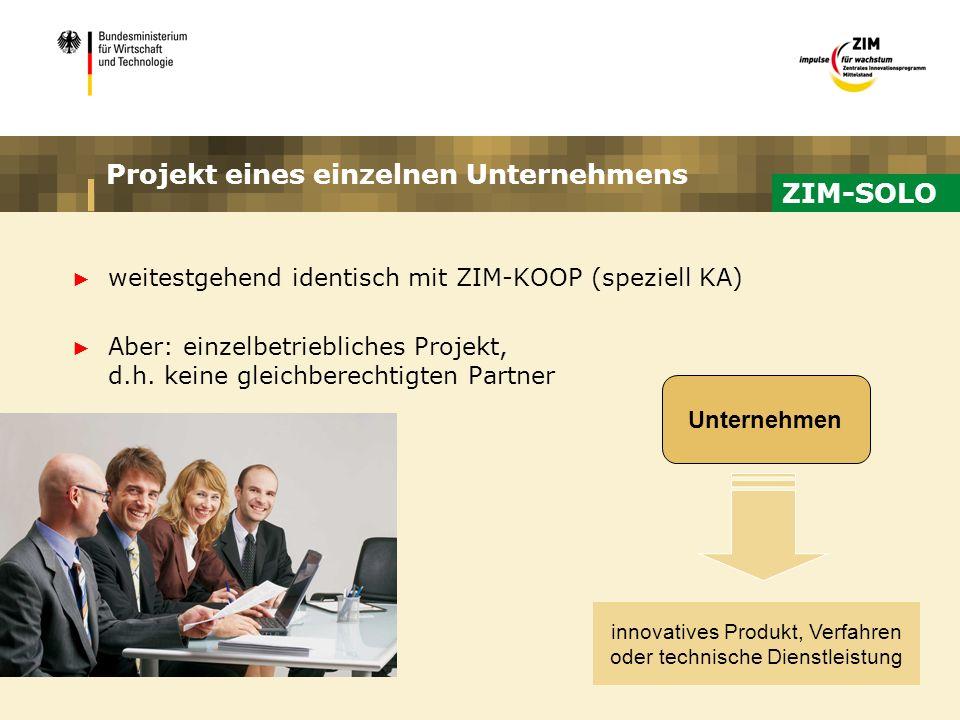 Projekt eines einzelnen Unternehmens weitestgehend identisch mit ZIM-KOOP (speziell KA) Aber: einzelbetriebliches Projekt, d.h. keine gleichberechtigt