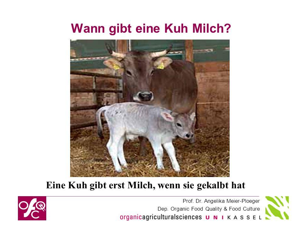 Prof. Dr. Angelika Meier-Ploeger Dep. Organic Food Quality & Food Culture Wann gibt eine Kuh Milch? Eine Kuh gibt erst Milch, wenn sie gekalbt hat