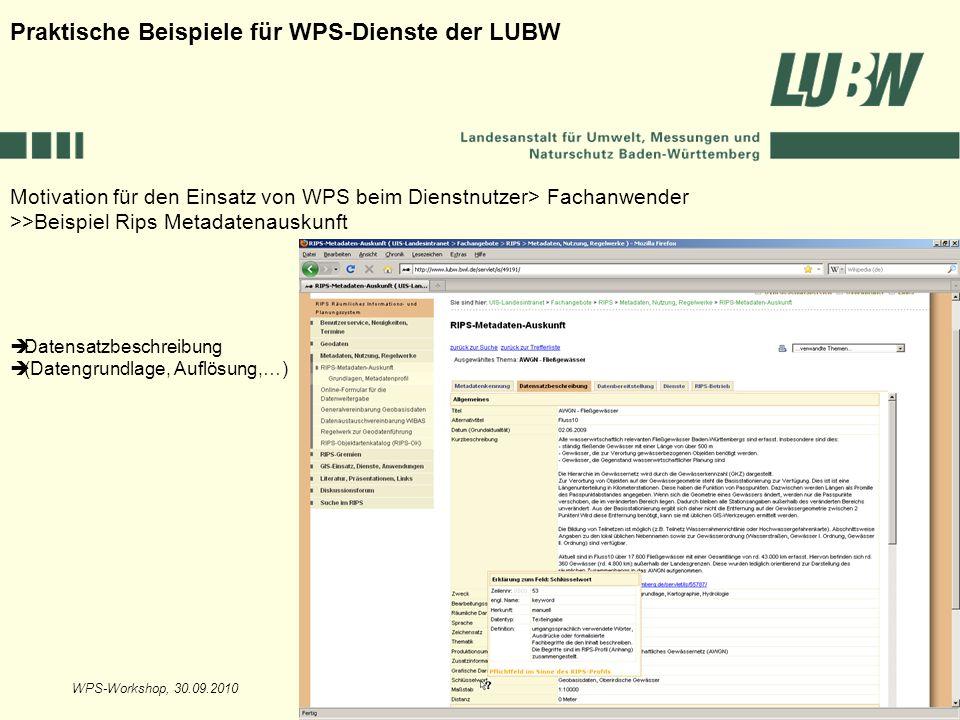 WPS-Workshop, 30.09.2010Folie 13 Motivation für den Einsatz von WPS beim Dienstnutzer> Fachanwender >>Beispiel Rips Metadatenauskunft Praktische Beisp