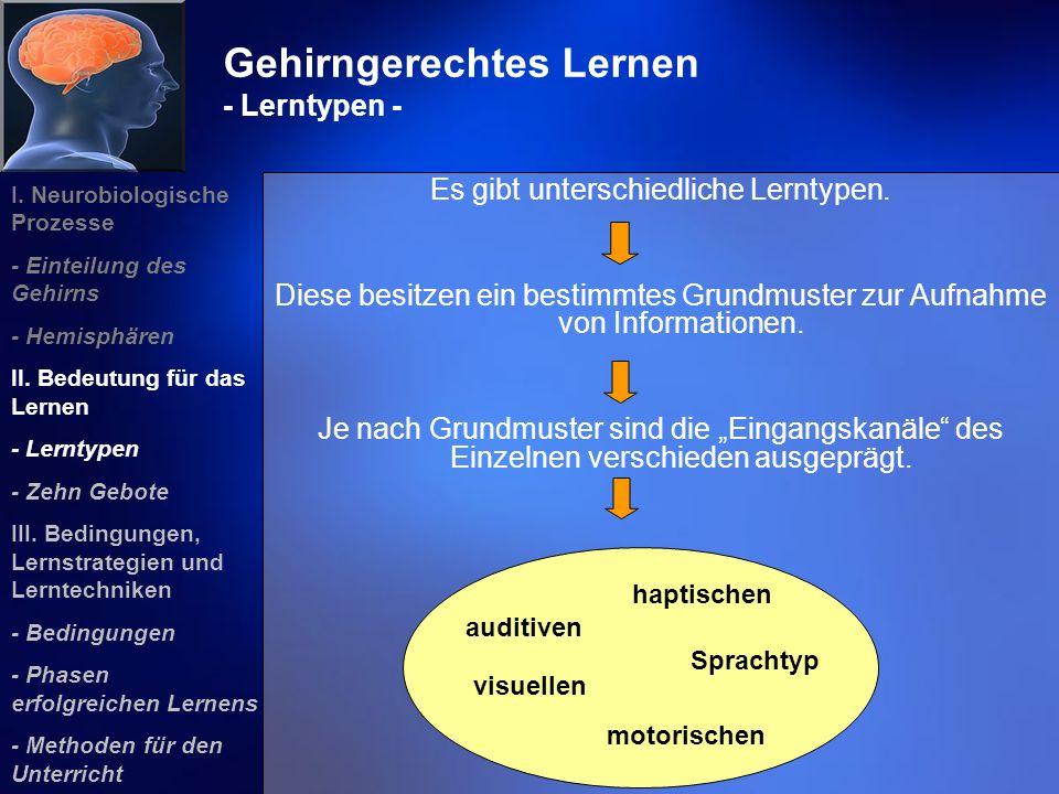 Gehirngerechtes Lernen - Lerntypen - Es gibt unterschiedliche Lerntypen. Diese besitzen ein bestimmtes Grundmuster zur Aufnahme von Informationen. Je