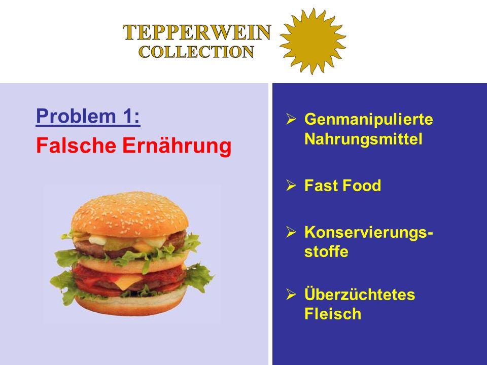 Problem 1: Falsche Ernährung Genmanipulierte Nahrungsmittel Fast Food Konservierungs- stoffe Überzüchtetes Fleisch