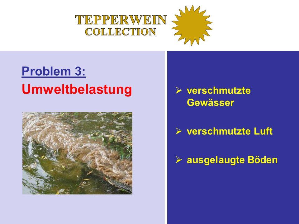 Problem 3: Umweltbelastung verschmutzte Gewässer verschmutzte Luft ausgelaugte Böden