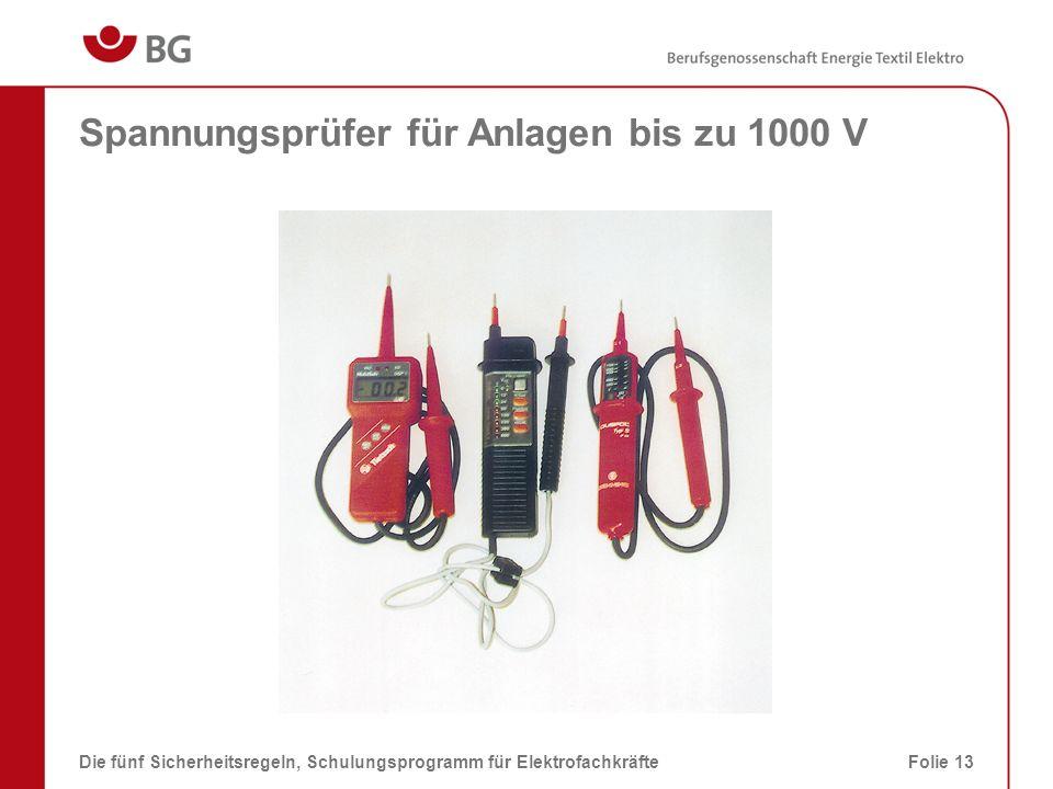 Spannungsprüfer für Anlagen bis zu 1000 V Die fünf Sicherheitsregeln, Schulungsprogramm für ElektrofachkräfteFolie 13