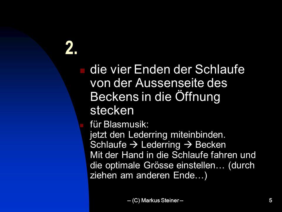 -- (C) Markus Steiner --5 2.