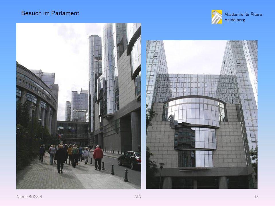 Akademie für Ältere Heidelberg Name BrüsselAfÄ13 Besuch im Parlament