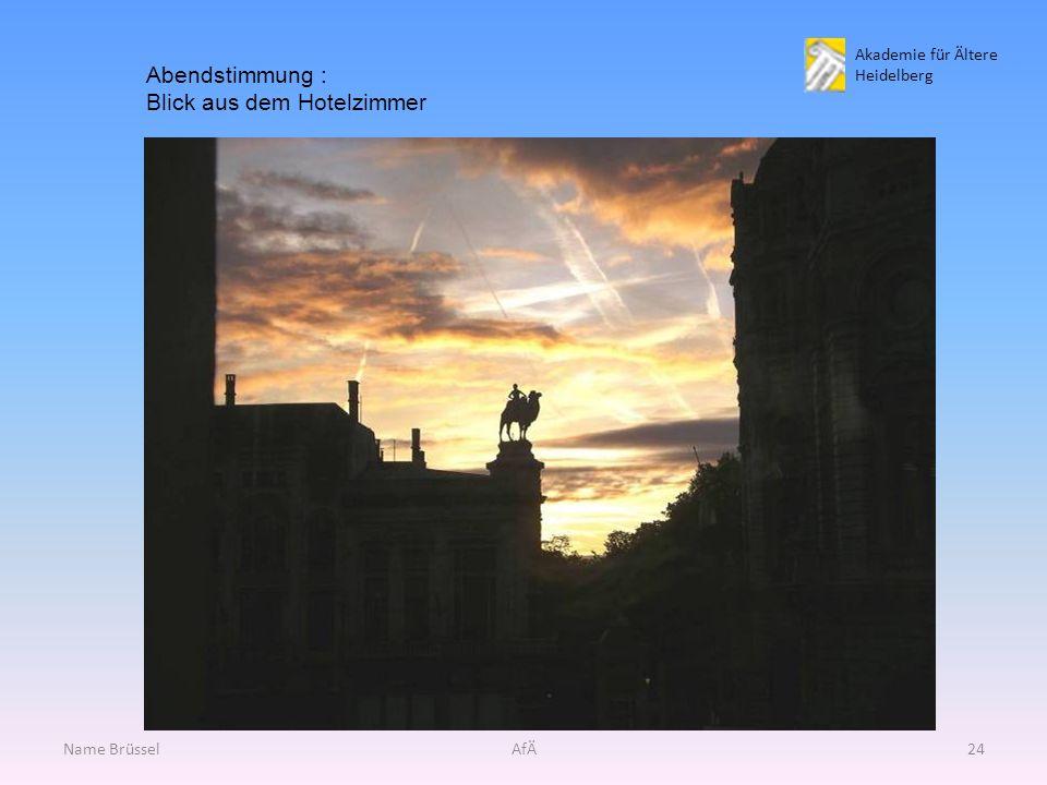 Akademie für Ältere Heidelberg Name BrüsselAfÄ24 Abendstimmung : Blick aus dem Hotelzimmer